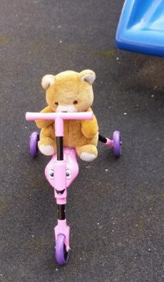 Bert the teddy bear